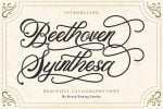 Beethoven Syinthesa
