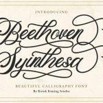 Beethoven Syinthesa