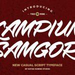 Kampiun Samgor